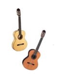 Cedar and Spruce Image Gap Guitars